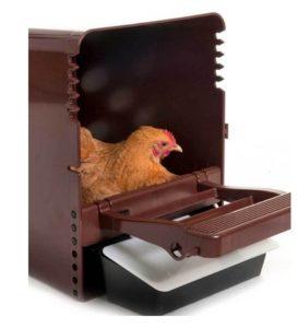 kippen houden| Kuikens| Legnest