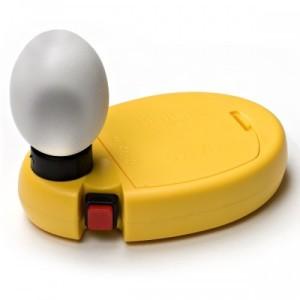 schouwlamp|kippen houden| Ei