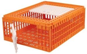Transportkist kippen|Kippen houden