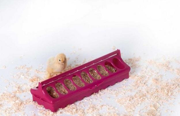 Kuiken voerbak   Kippen houden
